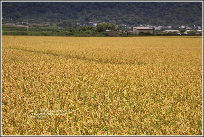 三民路段-2018-06-04.jpg