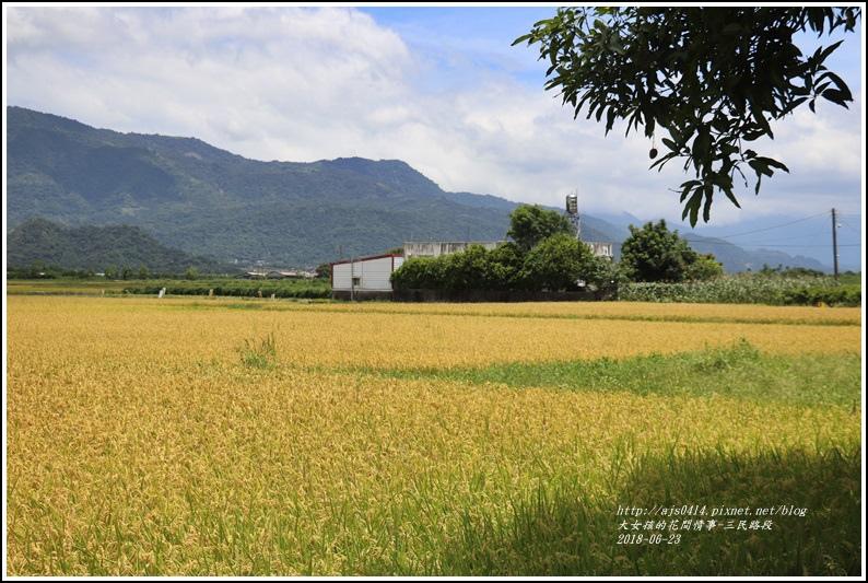三民路段-2018-06-06.jpg