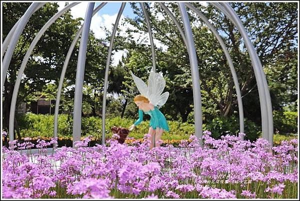 統一清境小瑞士花園-2018-06-13.jpg