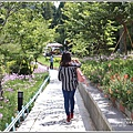 統一清境小瑞士花園-2018-06-25.jpg