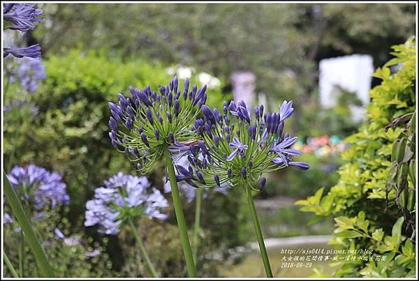 統一清境小瑞士花園-2018-06-33.jpg