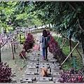 統一清境小瑞士花園-2018-06-38.jpg
