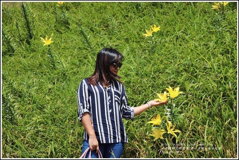 統一清境小瑞士花園-2018-06-40.jpg