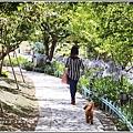 統一清境小瑞士花園-2018-06-42.jpg