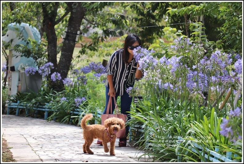 統一清境小瑞士花園-2018-06-48.jpg