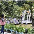 統一清境小瑞士花園-2018-06-51.jpg