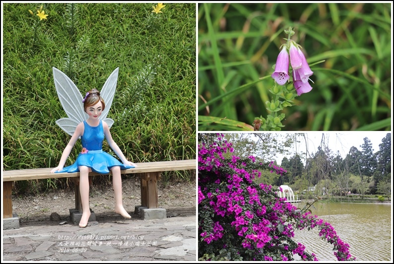 統一清境小瑞士花園-2018-06-66.jpg