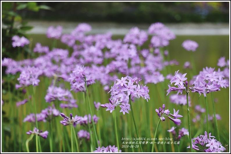 統一清境小瑞士花園-2018-06-75.jpg