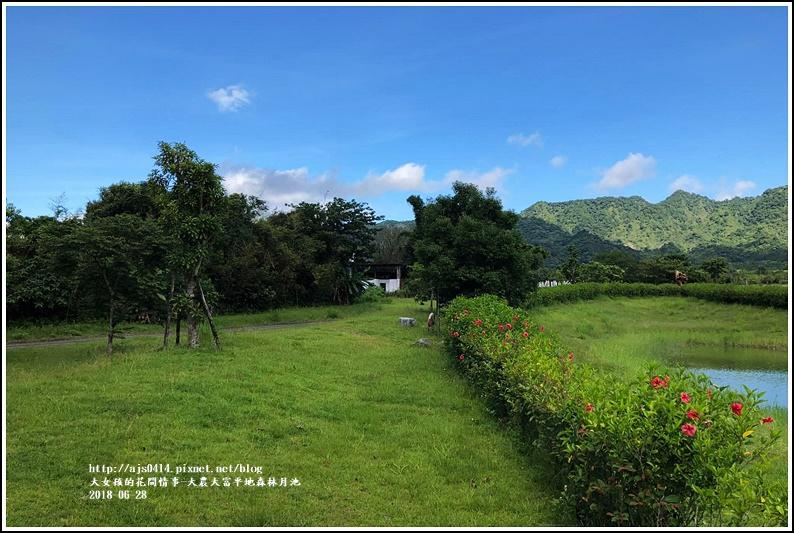 大農大富平地森林月池-2017-06-01.jpg