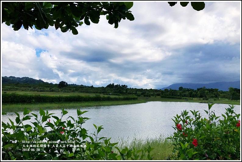 大農大富平地森林月池-2017-06-02.jpg