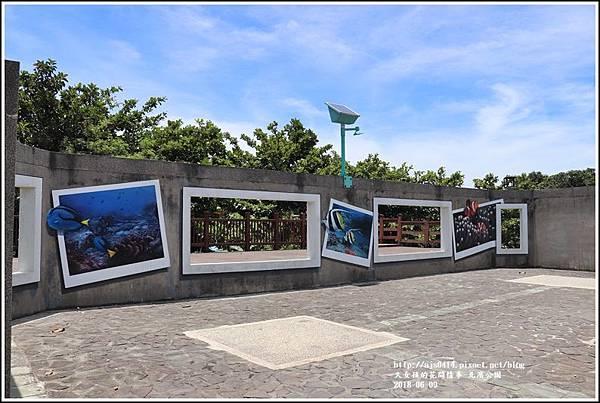 北濱公園-2018-06-11.jpg