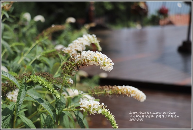 京畿道小法國村-2018-08-52.jpg