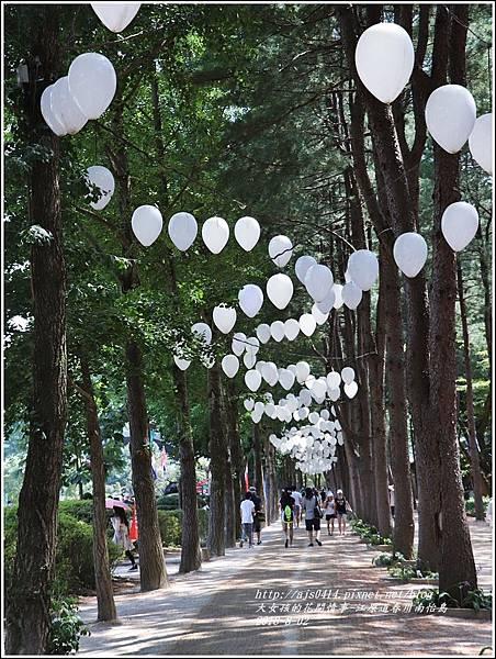 江原道春川市南怡島-2018-08-11.jpg