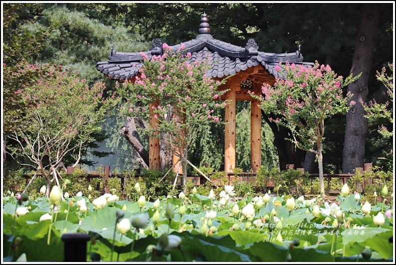 江原道春川市南怡島-2018-08-17.jpg
