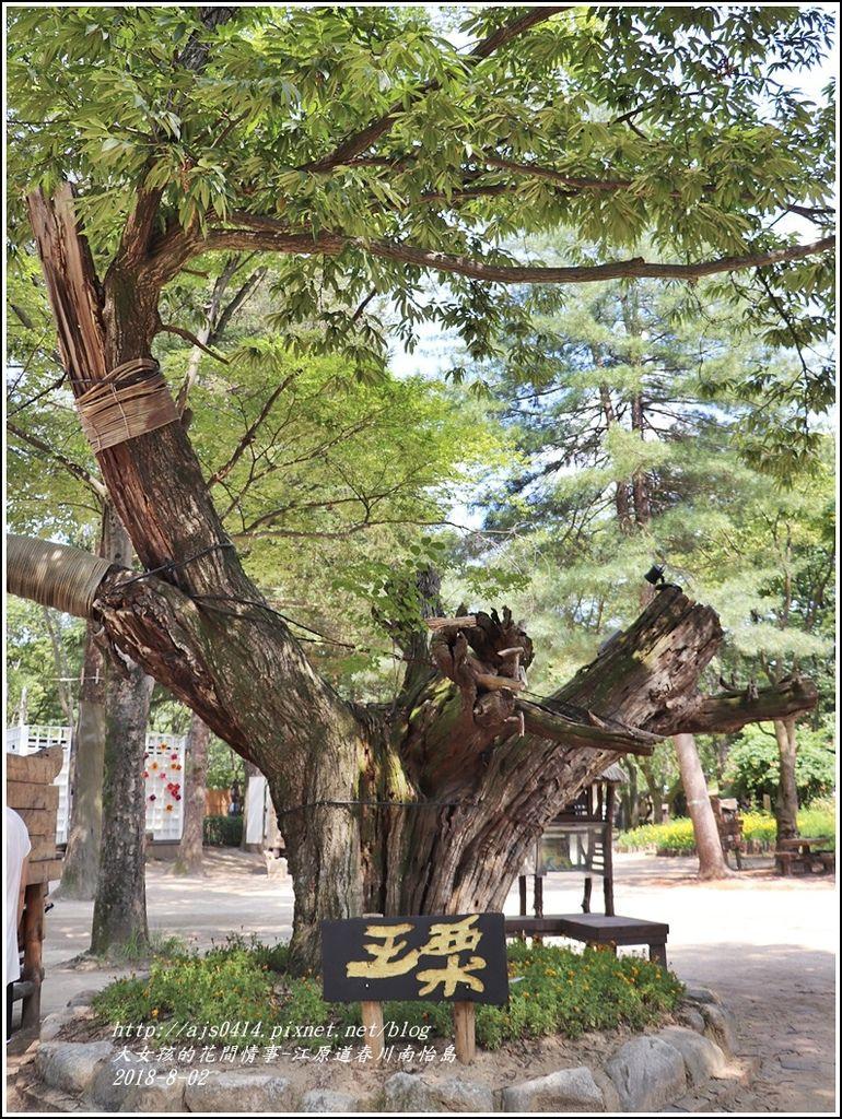 江原道春川市南怡島-2018-08-21.jpg