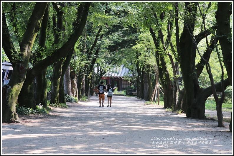 江原道春川市南怡島-2018-08-39.jpg