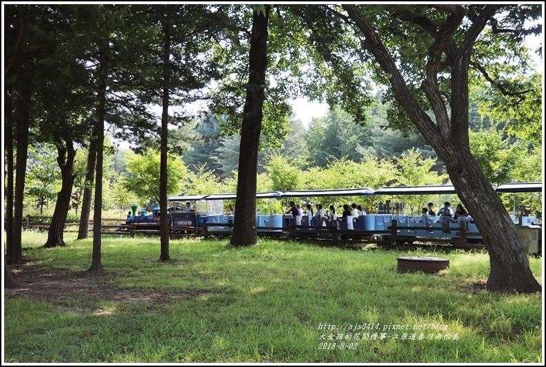 江原道春川市南怡島-2018-08-70.jpg