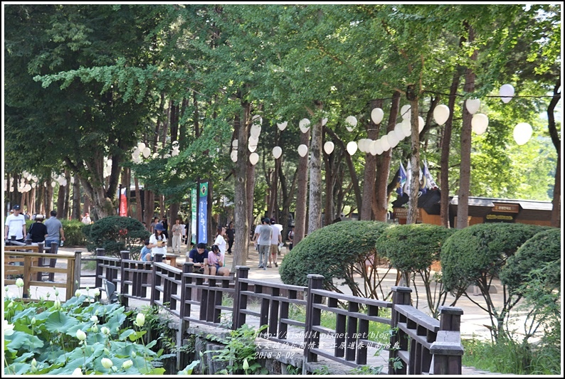 江原道春川市南怡島-2018-08-77.jpg