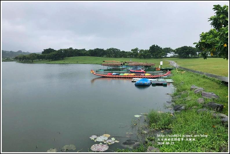 大坡池-2018-08-02.jpg