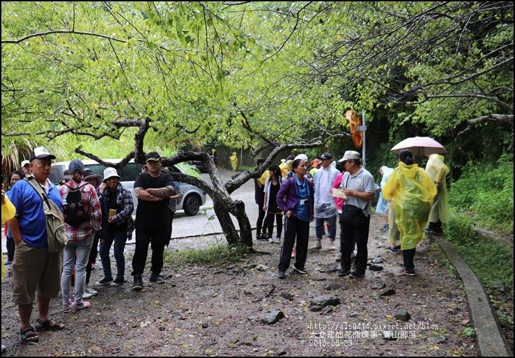 鸞山部落(會走路的樹)-2018-08-07.jpg