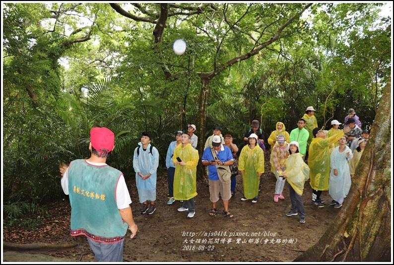 鸞山部落(會走路的樹)-2018-08-20.jpg