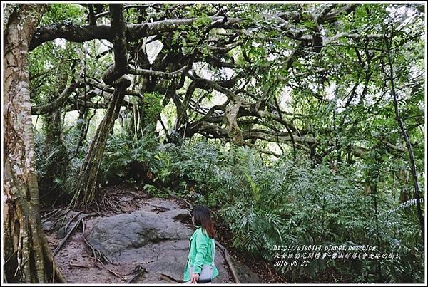 鸞山部落(會走路的樹)-2018-08-27.jpg