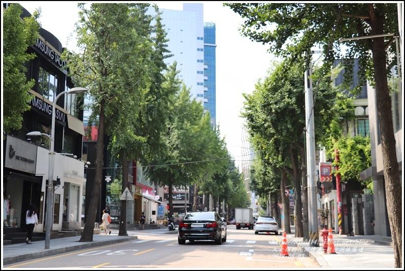 新沙洞林蔭道-2018-08-06.jpg