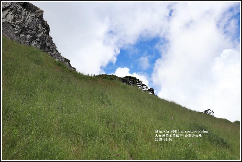 合歡山公路-2018-08-09.jpg