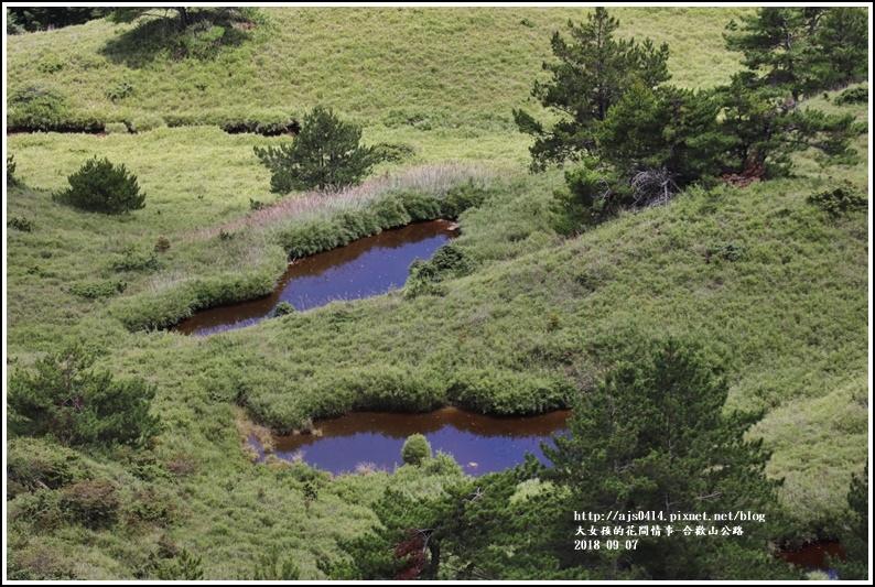 合歡山公路-2018-08-26.jpg