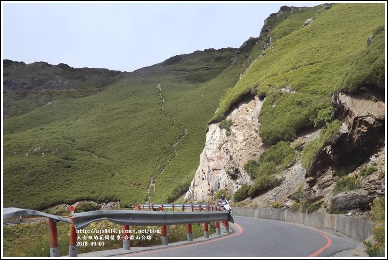 合歡山公路-2018-08-32.jpg