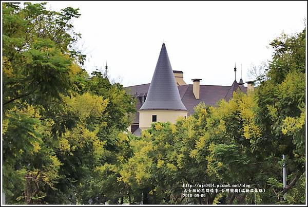 台灣欒樹(瑞穗溫泉路)-2018-09-04.jpg