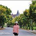 台灣欒樹(瑞穗溫泉路)-2018-09-06.jpg