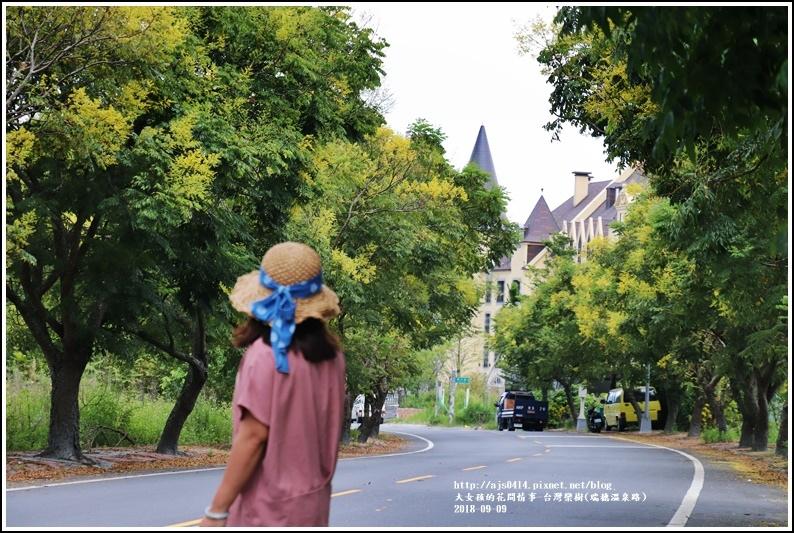 台灣欒樹(瑞穗溫泉路)-2018-09-07.jpg