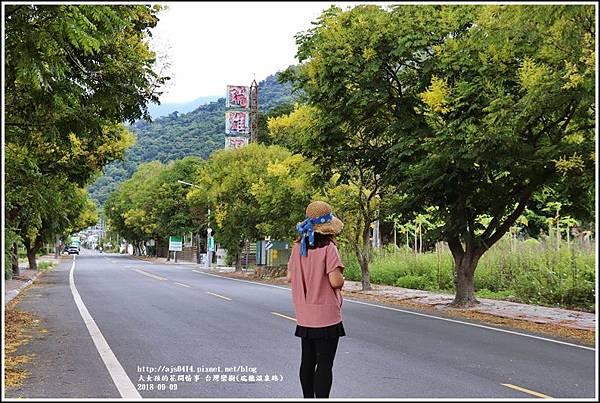 台灣欒樹(瑞穗溫泉路)-2018-09-11.jpg