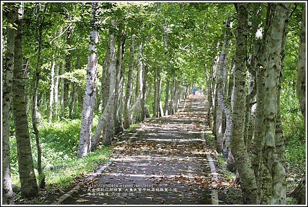 大農大富平地森林(南自行車道楓葉林)-2018-09-21.jpg