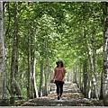 大農大富平地森林(南自行車道楓葉林)-2018-09-30.jpg