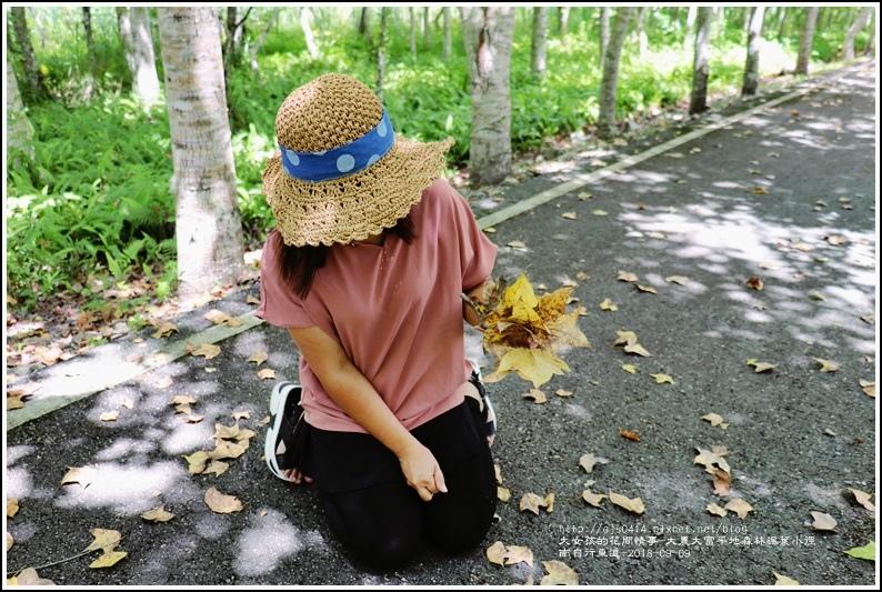 大農大富平地森林(南自行車道楓葉林)-2018-09-34.jpg