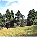 赤柯山金針花(小瑞士農場)-2018-08-07.jpg