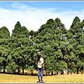 赤柯山金針花(小瑞士農場)-2018-08-14.jpg
