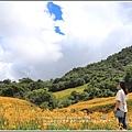 赤柯山金針花(小瑞士農場)-2018-08-32.jpg