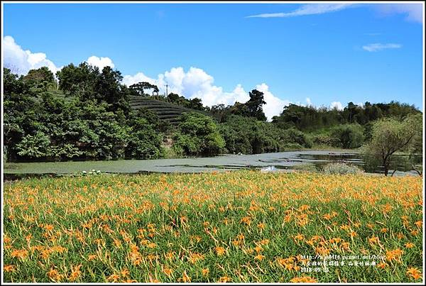 高寮竹林湖-2018-09-02.jpg