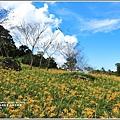 高寮竹林湖-2018-09-04.jpg