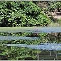 高寮竹林湖-2018-09-07.jpg