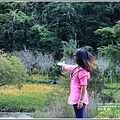 高寮竹林湖-2018-09-18.jpg
