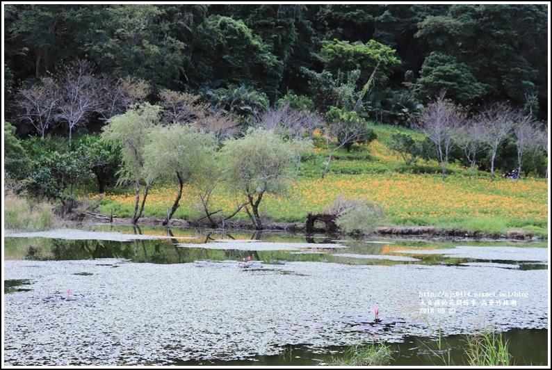 高寮竹林湖-2018-09-28.jpg