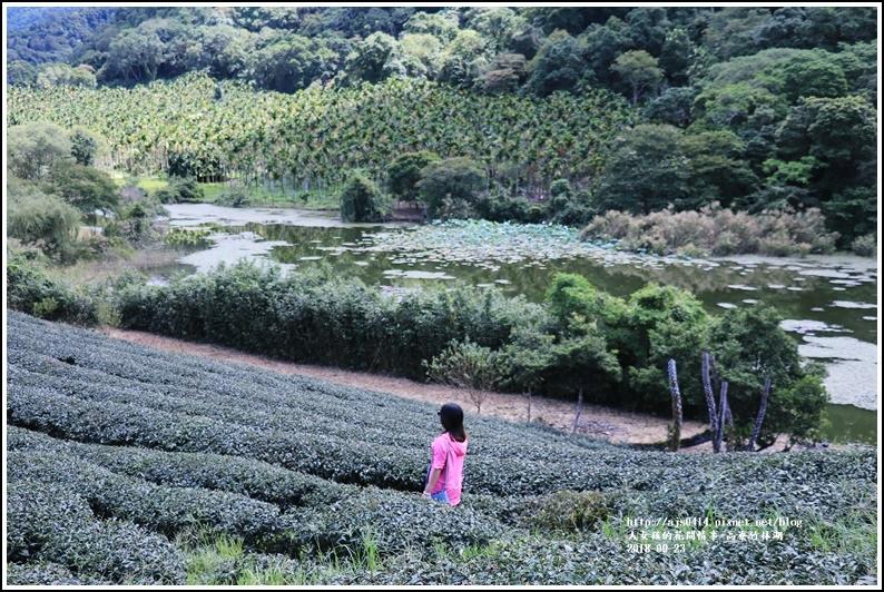 高寮竹林湖-2018-09-34.jpg