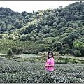 高寮竹林湖-2018-09-39.jpg