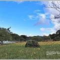 高寮竹林湖-2018-09-47.jpg