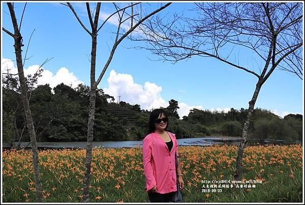 高寮竹林湖-2018-09-53.jpg