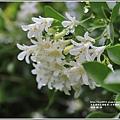 玉里神社遺址-2018-09-05.jpg